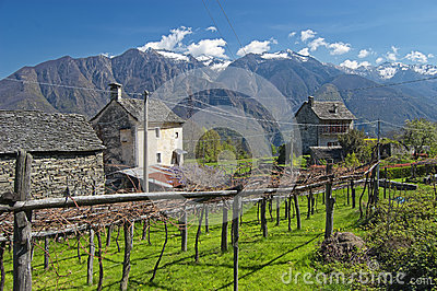Alpine village landscape in spring