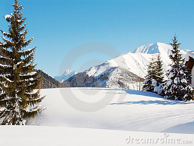 Alpine Winter Snow scene