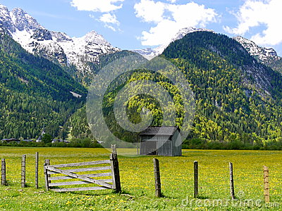 Alps mountain background