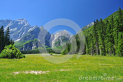 Alps mountain scenery. Friuli, Italy