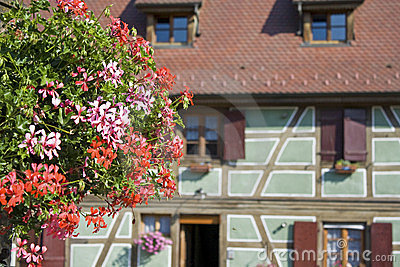 Alsace village with flower