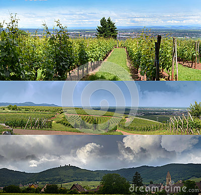 Alsatian landscapes and skies
