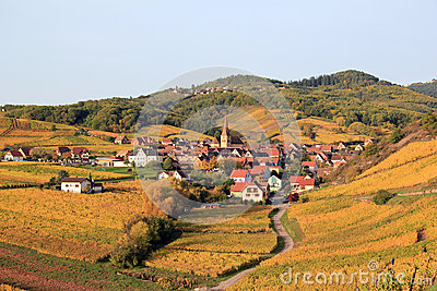 Alsatian village in the vineyard
