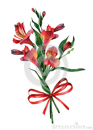 Free Alstroemeria Royalty Free Stock Photo - 38692855