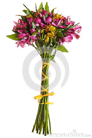 Alstroemeria flowers bouquet isolated