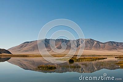 Altai valei