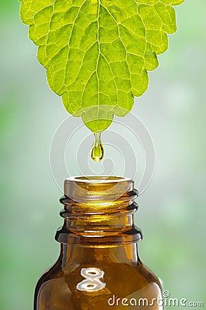 Free Alternative Medicine Royalty Free Stock Photography - 29465427