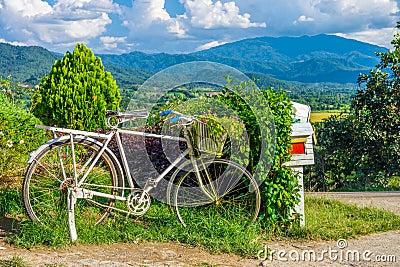 altes fahrrad und blumen im garten f r au endekoration stockfoto bild 58411481. Black Bedroom Furniture Sets. Home Design Ideas