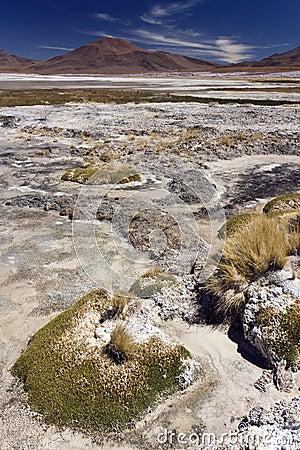 Altiplanic Lagoon - Atacama Desert - Chile