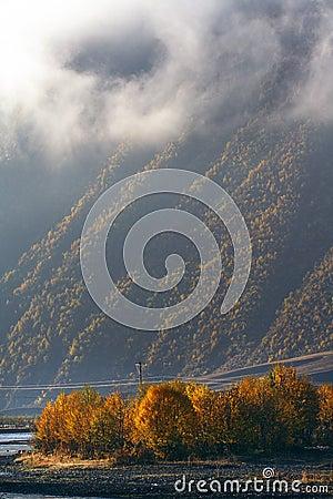 Altiplano morning