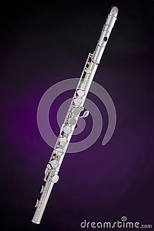 Alto Flute Isolated On Purple