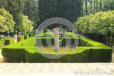 Alzacar garden in Seville