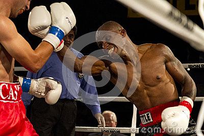 Amateur and Professional Boxing Editorial Photography