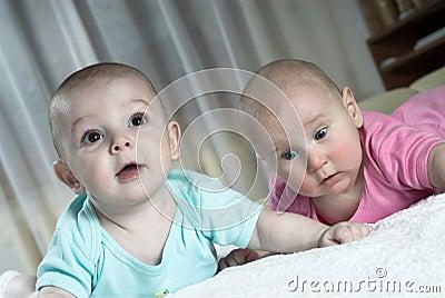 Amazed babies