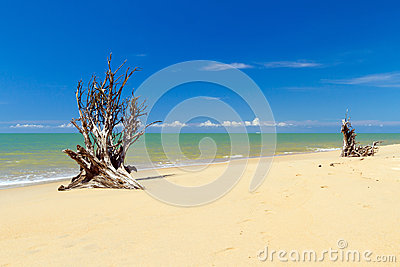Amazing beach in Thailand destroyed by tsunami