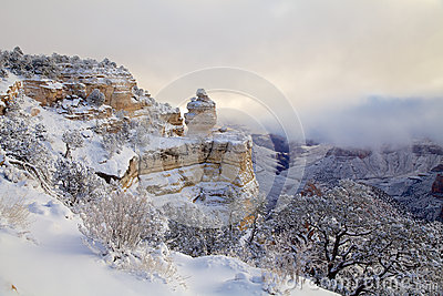 Snow Covered Landscape at Grand Canyon