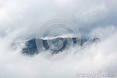 Amazing foggy moment. Landscape.