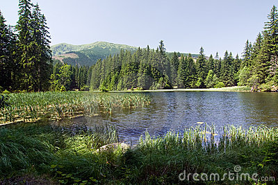 Amazing mountain lake in the summer