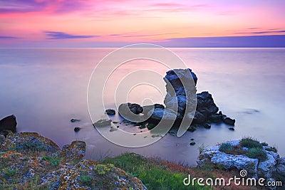Amazing stone island