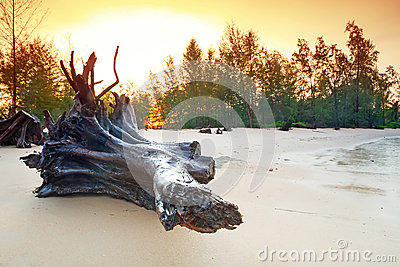 Amazing sunrise on the beach of Koh Kho Khao