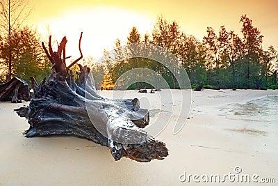 Amazing sunrise on the beach of Koh Kho Khao