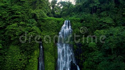Amazing Tropical Waterfall in Green Rainforest. Amazing Tropical Waterfall in Green Rainforest stock footage
