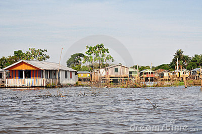 Amazon Floating and Stilt Typical House (Amazonia)