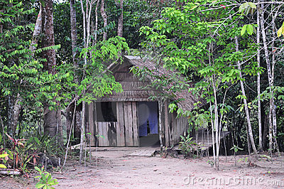 Amazon Jungle House (The Amazonia)