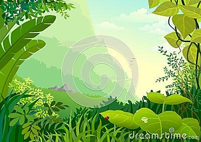 Amazon Jungle Trees and dense vegetation