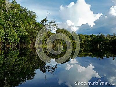 Amazon river, Brazil