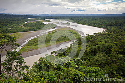 Amazonian lowlands, Eastern Ecuador