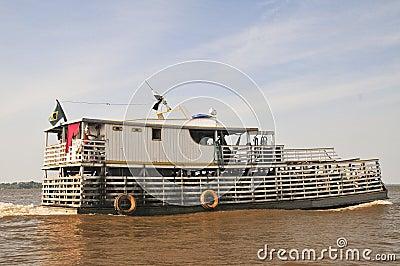 Amazonic Cattle Transportation (The Amazonia)