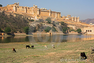 Amber Fort, near Jaipur (India)