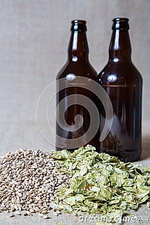 Amber Malt and Summer Hops brewing