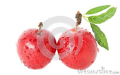 Ameixas maduras molhadas
