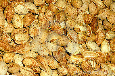 America Almond Nut Stock Photos - Image: 21725683