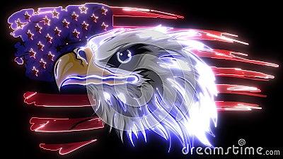 American bald eagle against flag video. American bald eagle against flag