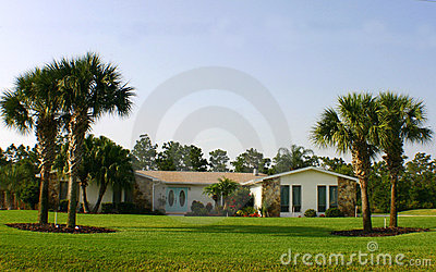 American Dream House on American Dream Home With Palm Trees And Blue Doors   American Dream