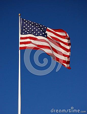 Free American Flag Stock Photos - 14845563