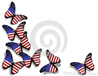 American flag butterflies on white