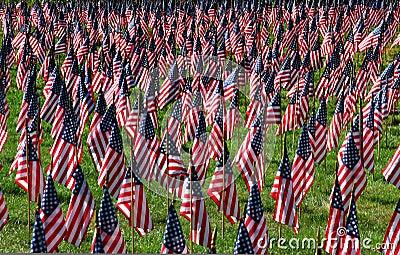 American flag field