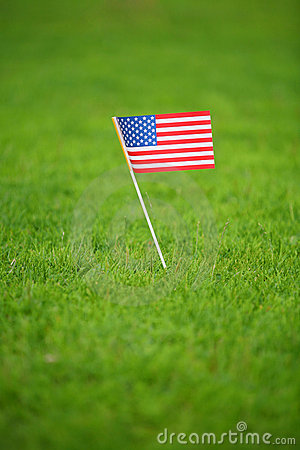 American flag on grass