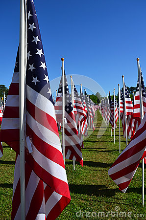 Free American Flag Heroism Flies Field Of Honor Royalty Free Stock Image - 31732396