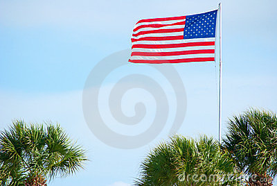 American flag and palm trees
