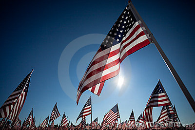 American Flags commemorating national holiday