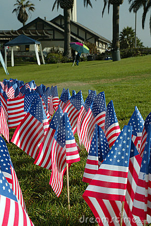 American Flags in a Park