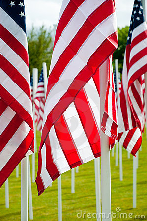 American flags at veterans memorial