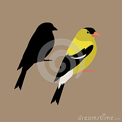 american goldfinch vector illustration style Flat side silhouette Vector Illustration