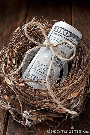 American Nest Egg Money