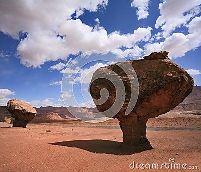 American rock desert